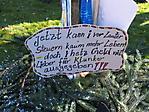 Rathaussturm und Narrenbaumsetzen